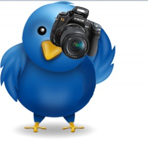 twitter photo sharing